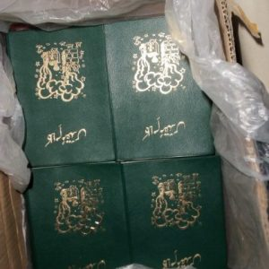 Urdu Language Bibles