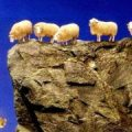 sheep jumping off a cliff